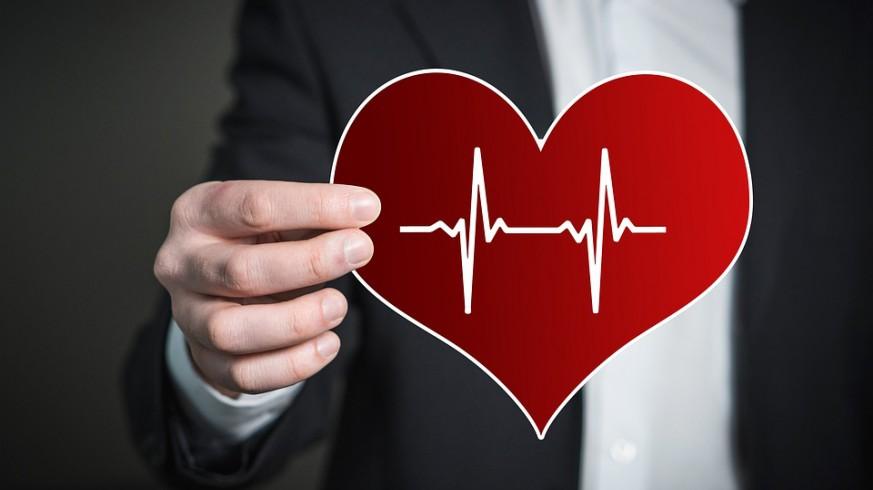 CLUB DE CIENCIAS - Nuevas especies y la prevención de enfermedades cardiovasculares