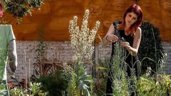 """VIVA LA RADIO. Yo que soy una chica formal. Con flores a María y otras melodías del """"Flower Power"""""""