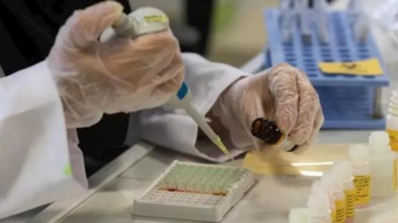 Un laboratorio analiza muestras de test de COVID-19