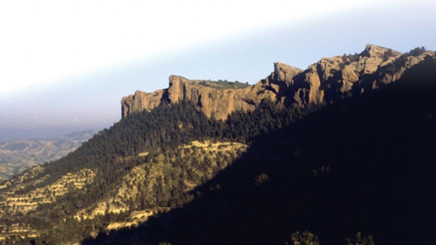 """VIVA LA RADIO. Espacios naturales por descubrir: """"Camino de la Umbría"""" Carrascoy - El Valle"""