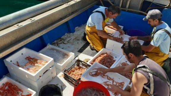 Paro de pescadores y lonjas por la política europea que limita la pesca de arrastre