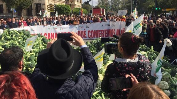 VÍDEO   Descargan dos camiones de brócoli frente a la Delegación del Gobierno