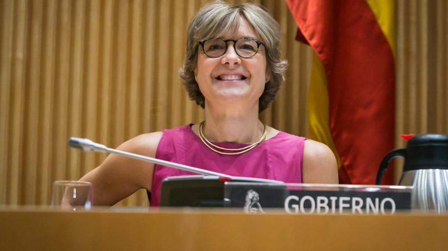 Tejerina durante su comparecencia en el Congreso