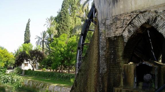 Noria de Alcantarilla. Al fondo, el Museo de la Huerta