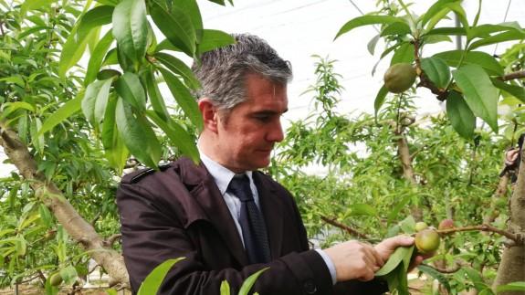 Del Amor ha visitado una parcela de cultivos ecológicos ultra tempranos en San Pedro