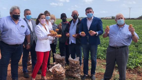 Visita institucional a una finca de producción de patatas. CARM