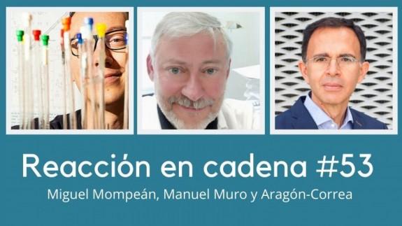 Miguel Mompeán, Manuel Muro y Aragón-Correa