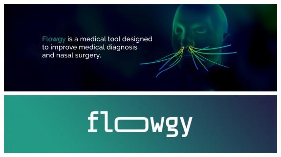 PLAZA PÚBLICA. Talento emprendedor. Flowgy: ingeniería de fluidos al servicio de la cirugía nasal