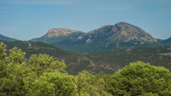 Las altas temperaturas continuadas ponen en peligro el monte