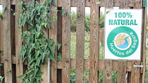VIVA LA RADIO. Itinerario cultural. Visitamos la Sima de las Palomas, viajamos por la floración de Cieza y conocemos los Huertos del Segura