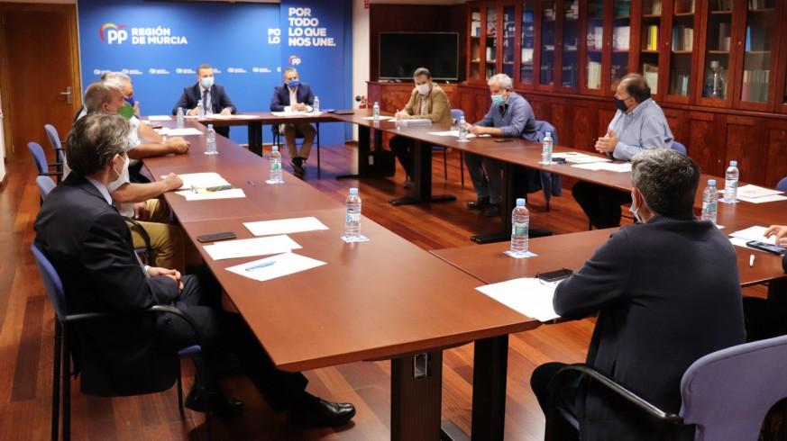 Los representantes del Grupo Parlamentario Popular (al fondo) durante su reunión con los responsables de las organizaciones agrarias. Foto PP
