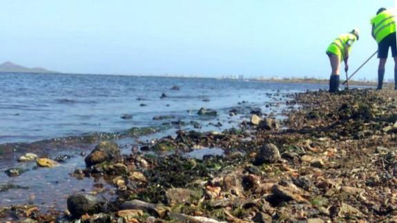 Ecologistas en Acción asegura que la reforma de Ley planteada por el PP para el Mar Menor no soluciona nada