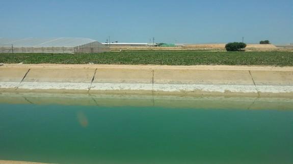 Canal del Trasvase Tajo Segura