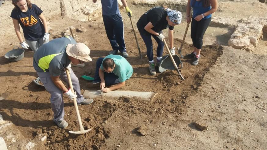 Yacimiento de Los Torrejones, Yecla