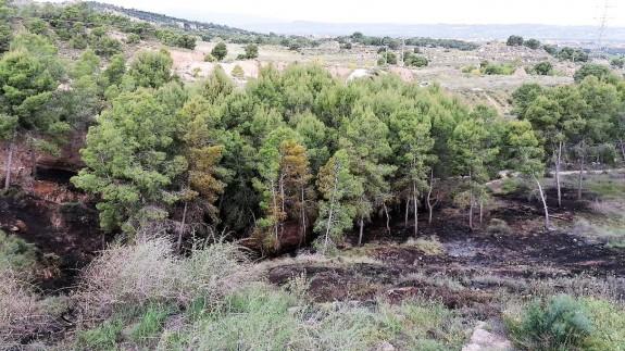 Arden cinco mil metros cuadrados de matorral en San José de la Montaña