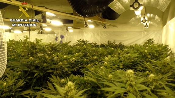 Marihuana incautada por la guardia civil