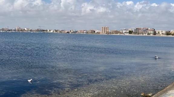 Imagen del Mar Menor en Lo Pagán