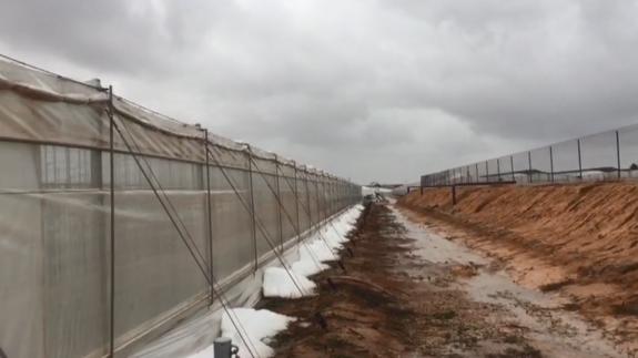 VÍDEO | Numerosos invernaderos tumbados por el viento y el granizo en el Campo de Cartagena