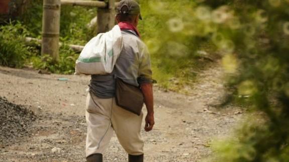Murcia pide un control nominal de temporeros en tránsito para prevenir posibles brotes de coronavirus