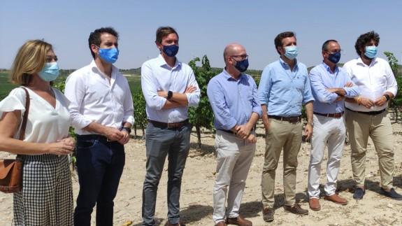 Casado cree que se debe resolver la liquidez y flexibilidad laboral del sector del vino