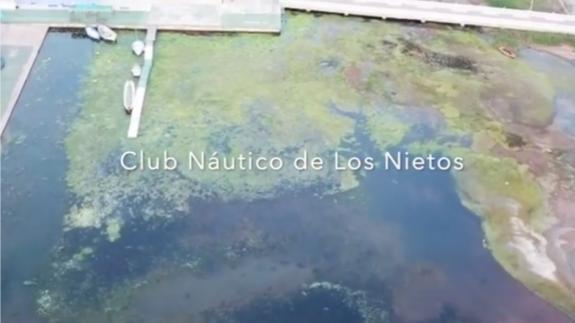Denuncian el mal estado del Mar Menor en las inmediaciones del Club Náutico de Los Nietos