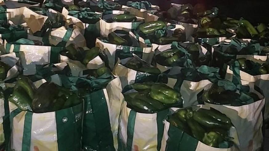 El grupo Roca de la Guardia Civil detiene a una banda que había robado 700 kilos de pimientos