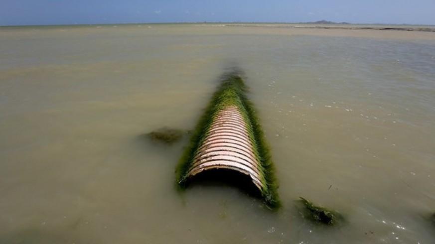 PP, Cs y Vox presentan la reforma para prohibir vertidos al Mar Menor. GREENPEACE