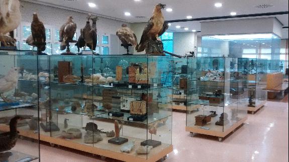 CLUB DE CIENCIAS - Noche de los museos científica