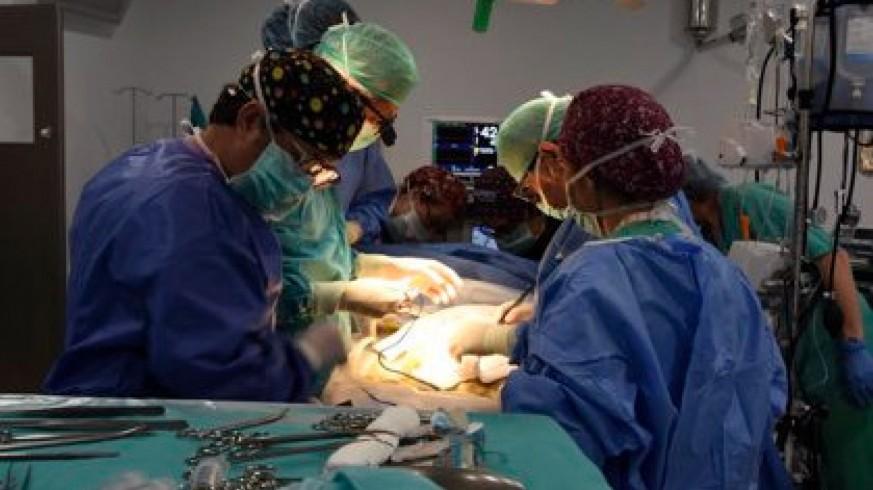 Imagen de un quirófano donde se realiza un trasplante