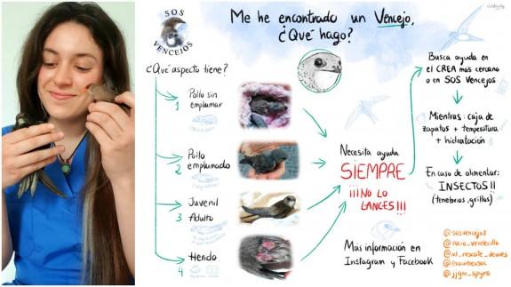 Rocío Gómez Pérez y cartel de la iniciativa SOS vencejos