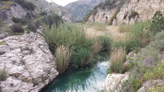VIVA LA RADIO. Cambiemos el mundo. Foodtopía. Río de Aguas (Almería), un oasis amenazado en el desierto