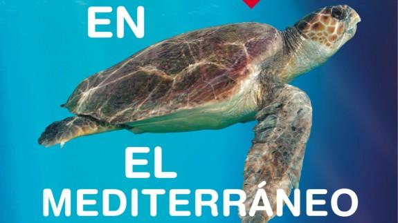 """TURNO DE NOCHE. Varios municipios de la Región se suman a la campaña """"Tortugas en el Mediterráneo"""" que organiza la Fundación Oceanogràfic"""