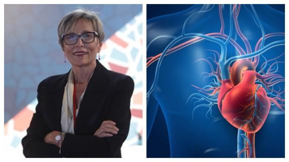 PLAZA PÚBLICA. Colegio de Enfermería: 2ª edición del 'Curso de experto en técnicas cardiovasculares avanzadas'